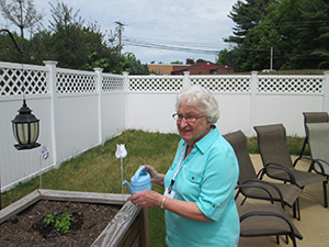 Senior Activities/gardening