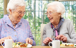 senior moments adult day center meal program, tolland ct